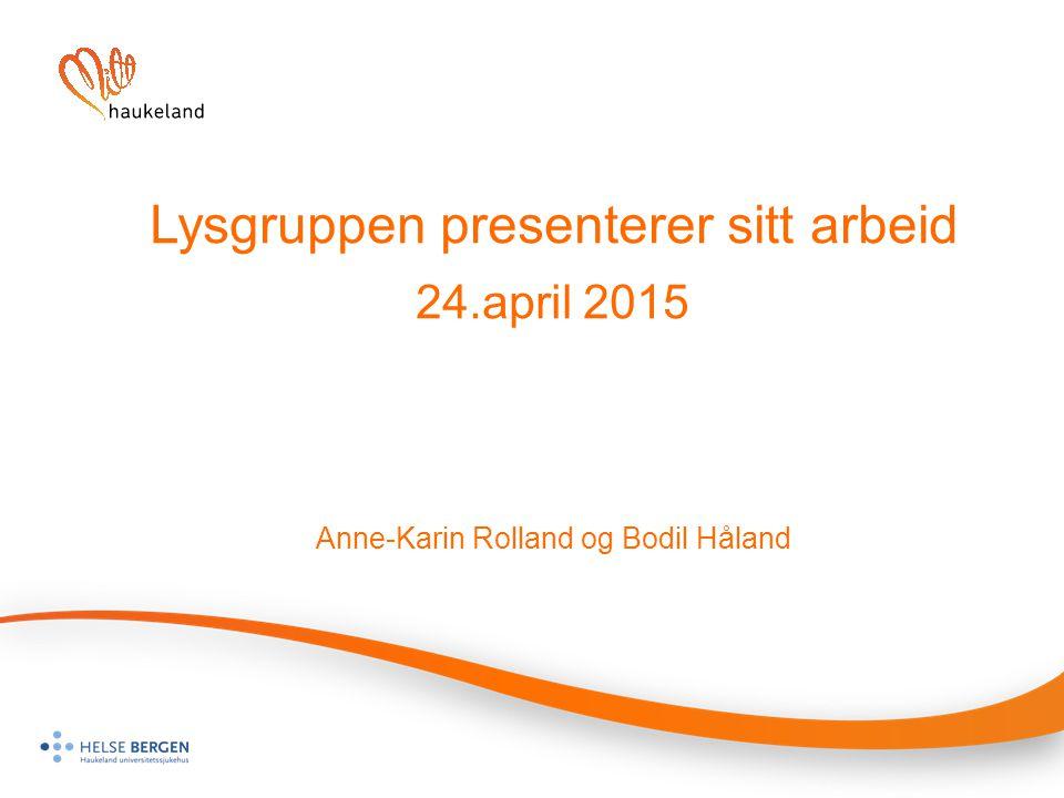 Lysgruppen presenterer sitt arbeid. 24. april 2015