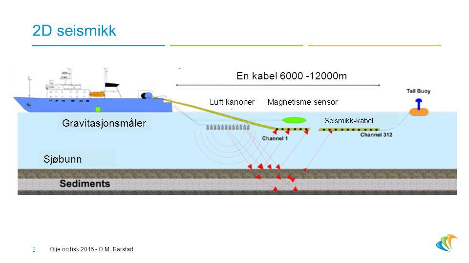 2D seismikk En kabel 6000 -12000m Gravitasjonsmåler Sjøbunn