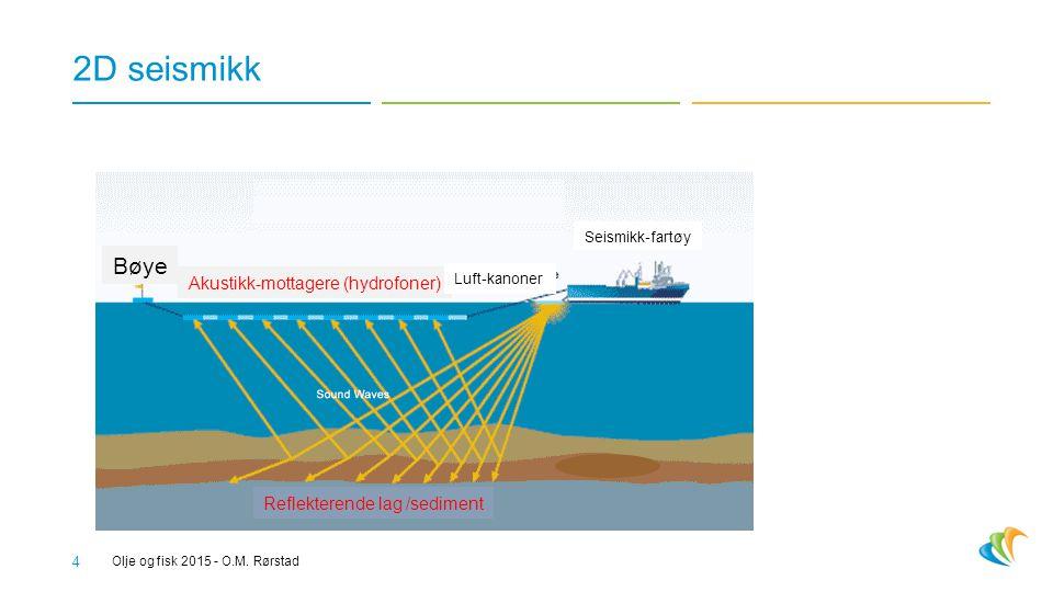 2D seismikk Bøye Akustikk-mottagere (hydrofoner)
