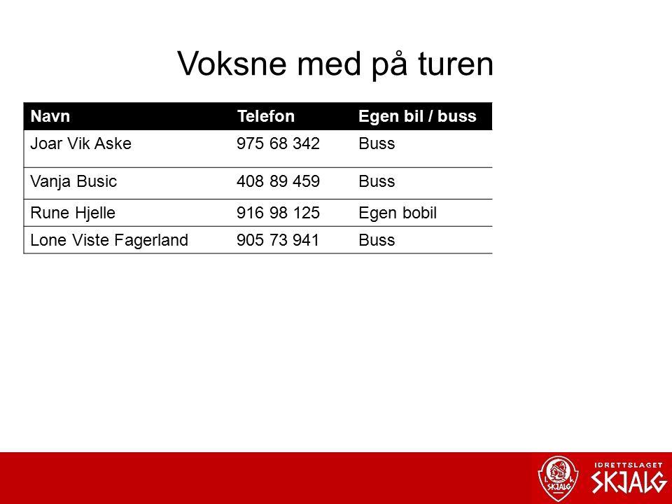 Voksne med på turen Navn Telefon Egen bil / buss Joar Vik Aske