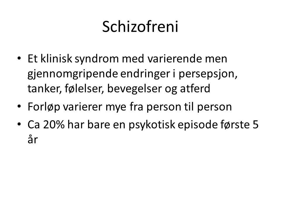 Schizofreni Et klinisk syndrom med varierende men gjennomgripende endringer i persepsjon, tanker, følelser, bevegelser og atferd.