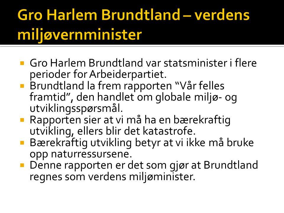 Gro Harlem Brundtland – verdens miljøvernminister