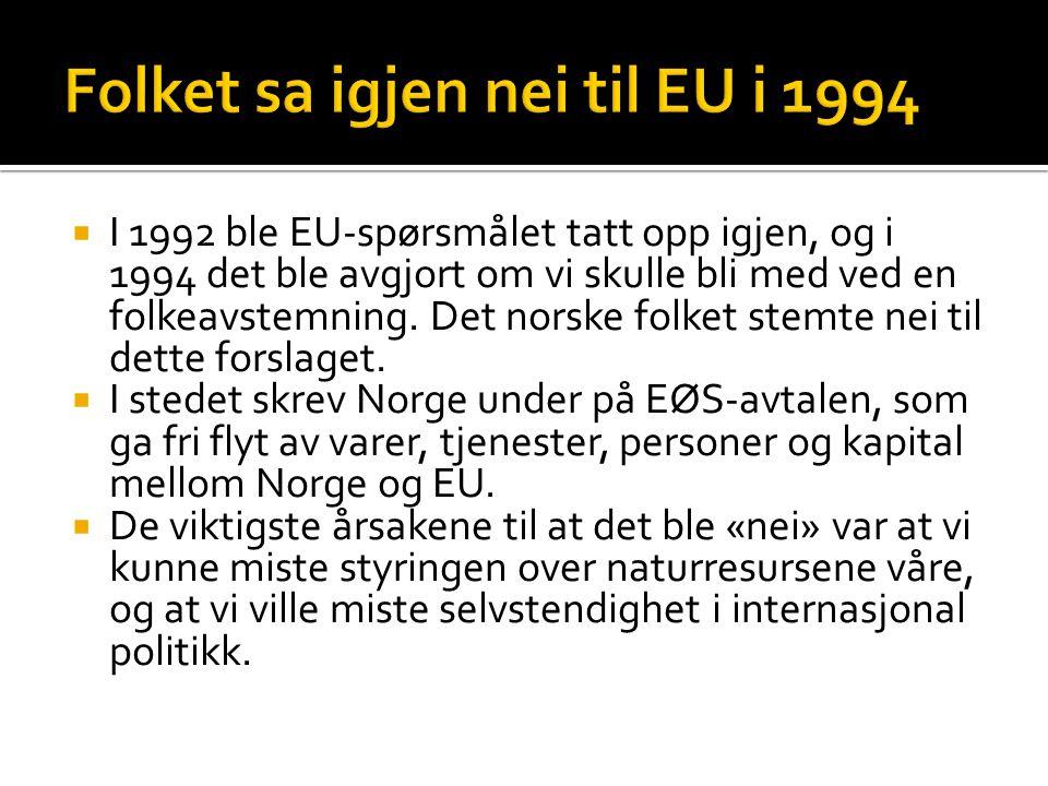 Folket sa igjen nei til EU i 1994