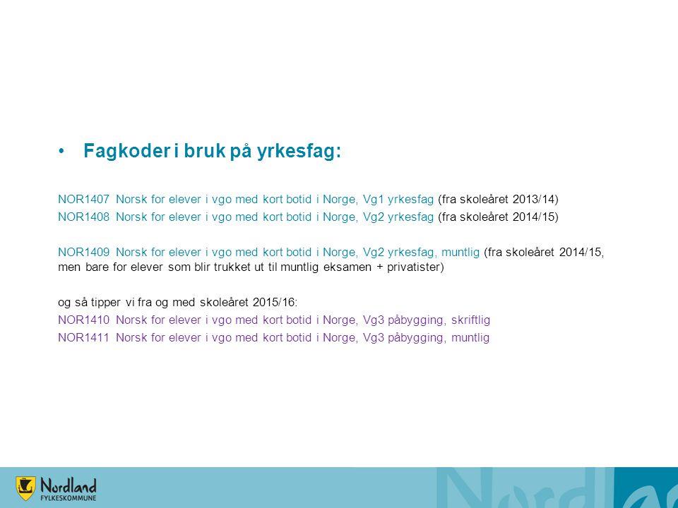 Fagkoder i bruk på yrkesfag:
