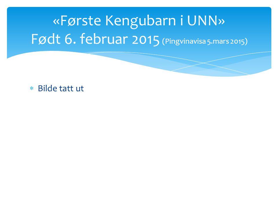 «Første Kengubarn i UNN» Født 6. februar 2015 (Pingvinavisa 5