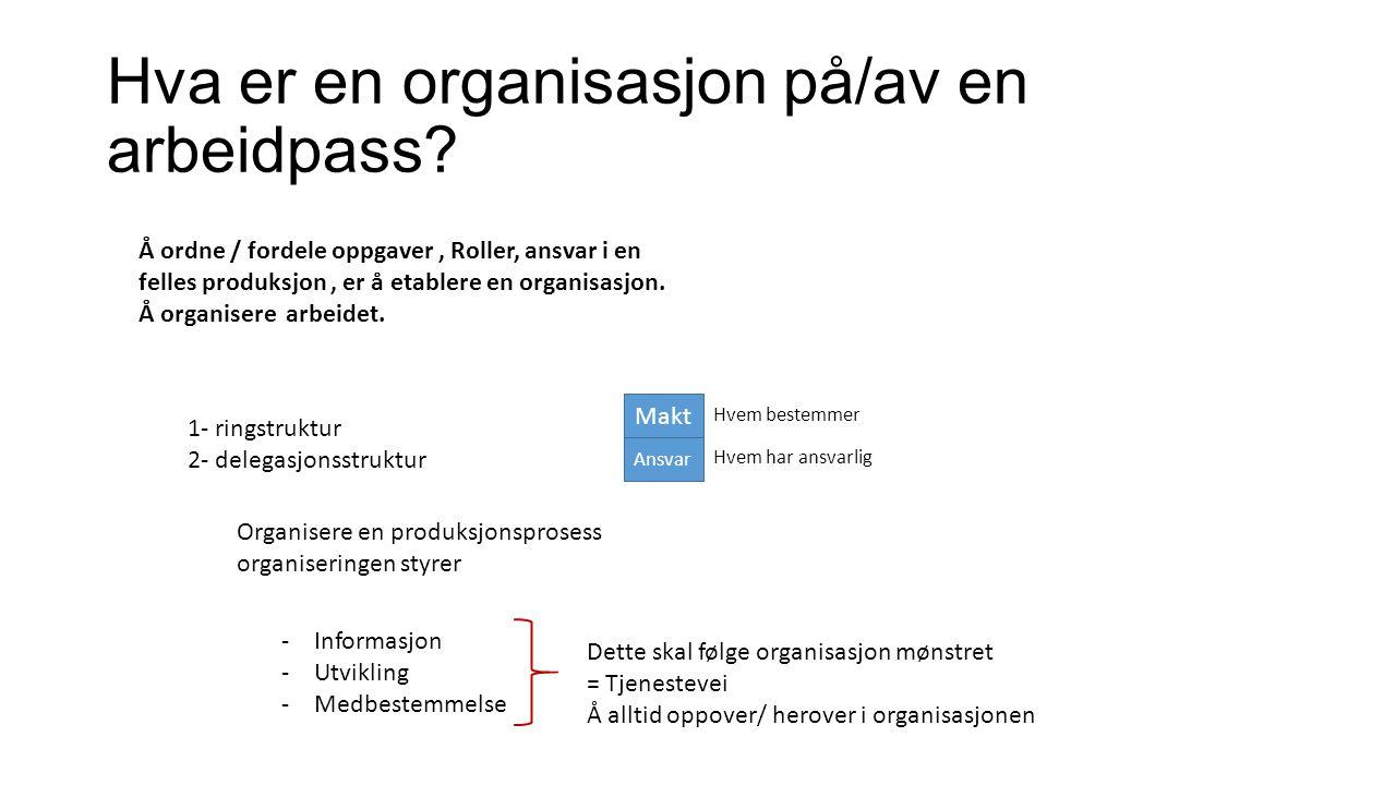 Hva er en organisasjon på/av en arbeidpass