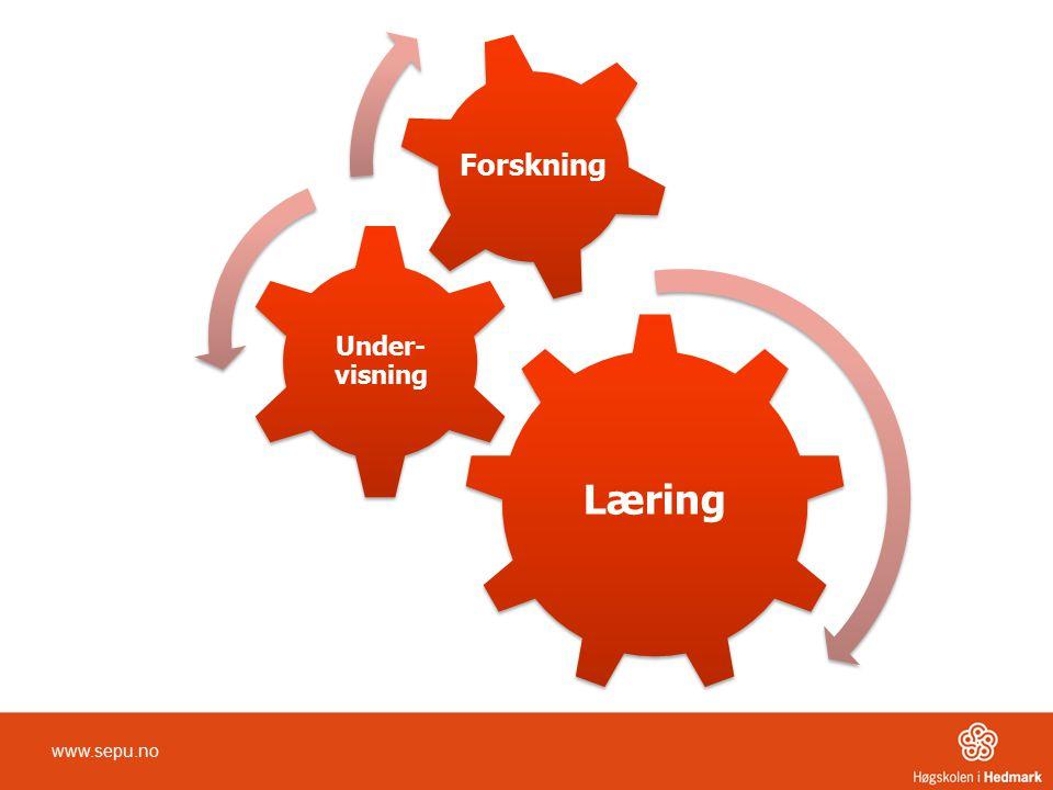 Læring Under-visning Forskning www.sepu.no