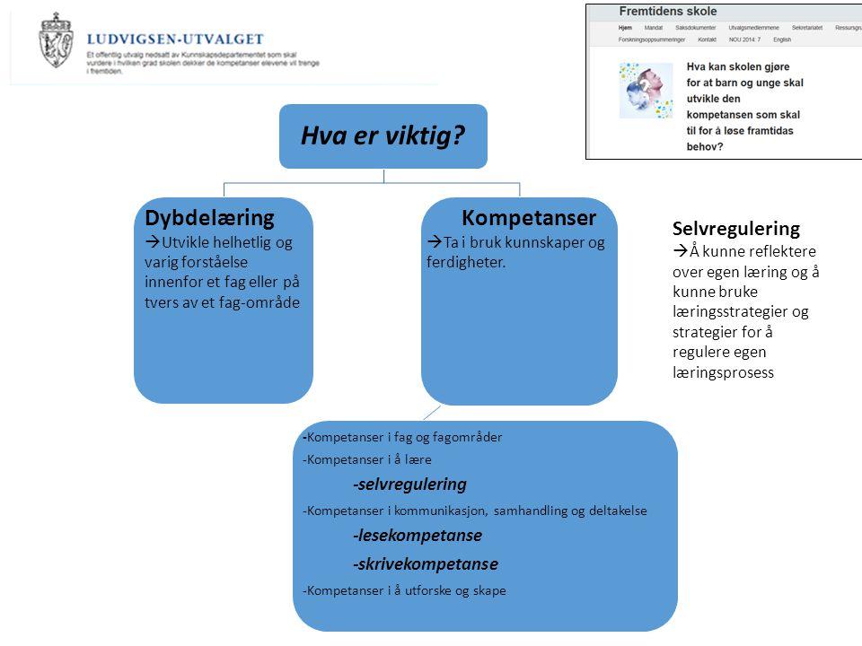 Hva er viktig Dybdelæring Kompetanser Selvregulering