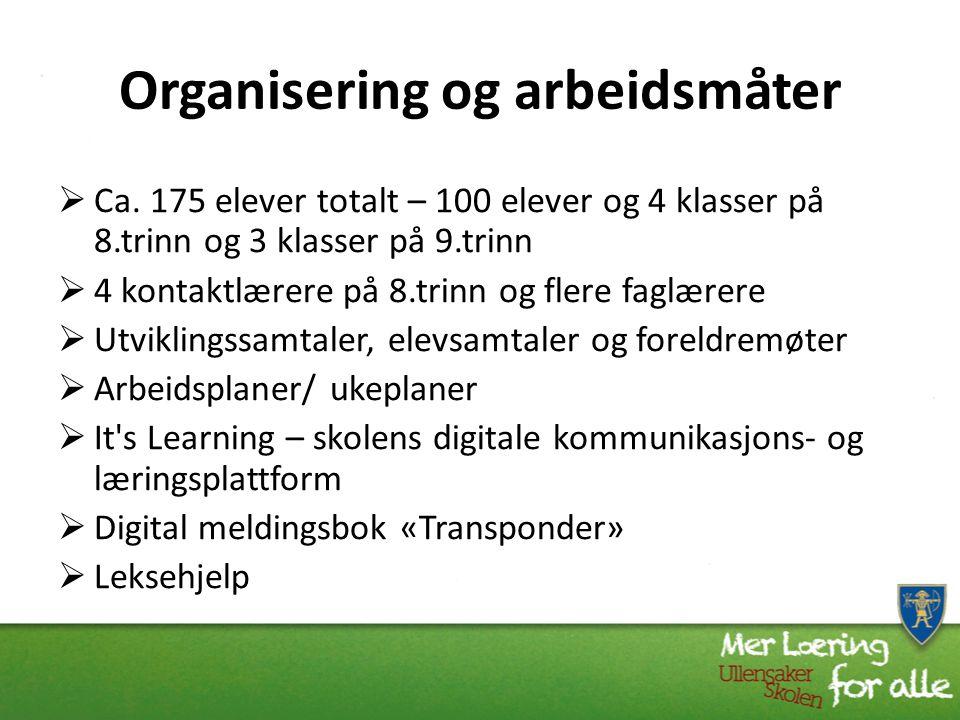Organisering og arbeidsmåter