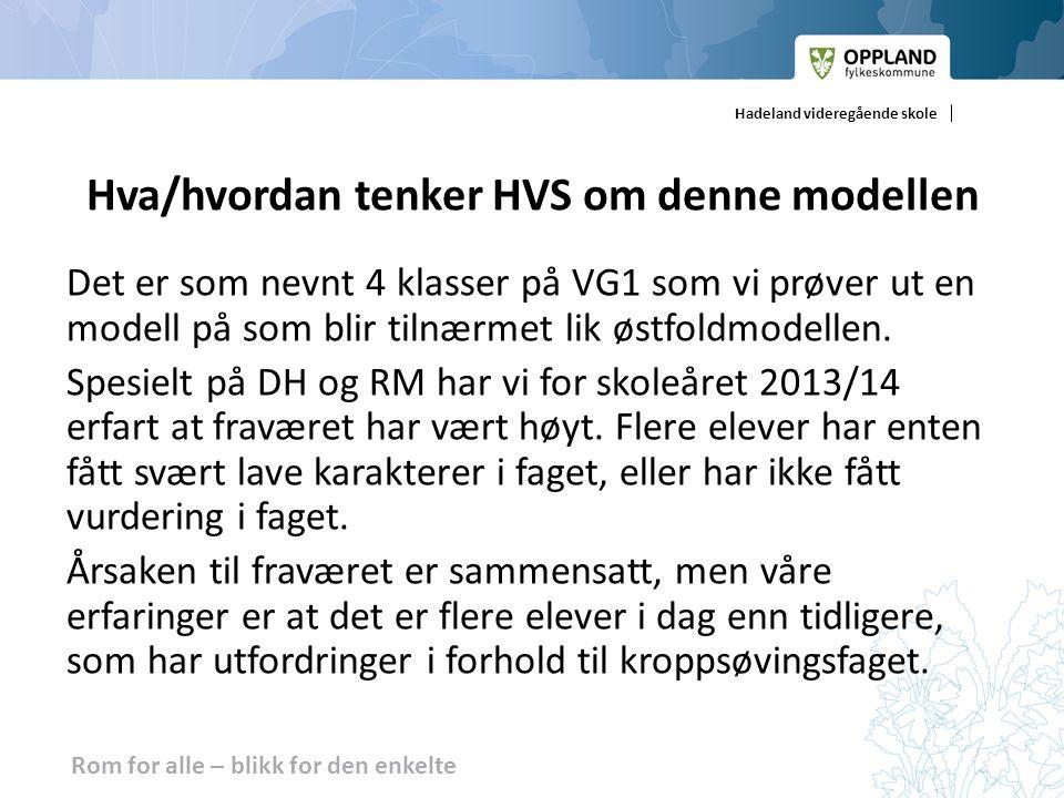 Hva/hvordan tenker HVS om denne modellen