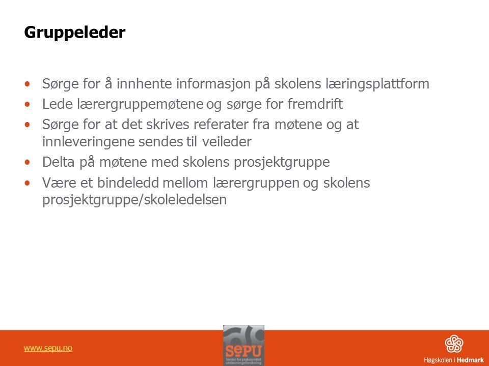 Gruppeleder Sørge for å innhente informasjon på skolens læringsplattform. Lede lærergruppemøtene og sørge for fremdrift.