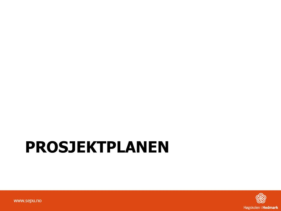 Prosjektplanen www.sepu.no