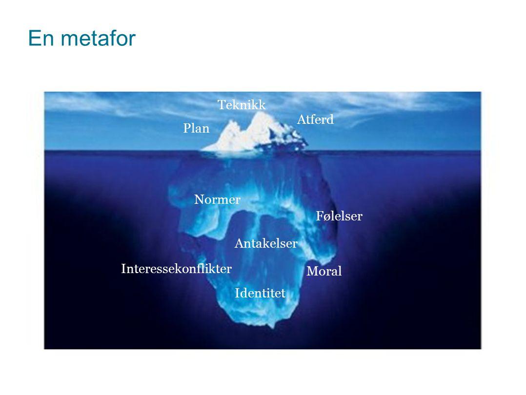En metafor Teknikk Atferd Plan Normer Følelser Antakelser