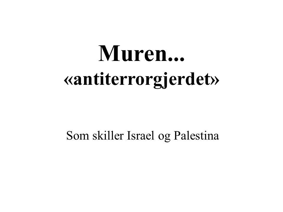 Muren... «antiterrorgjerdet»