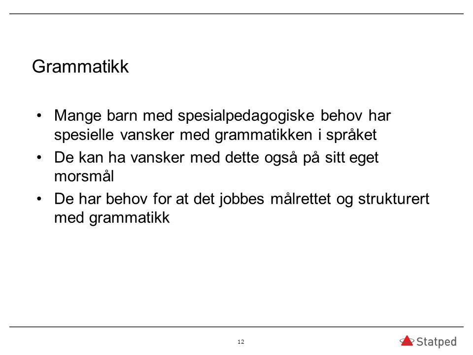 Grammatikk Mange barn med spesialpedagogiske behov har spesielle vansker med grammatikken i språket.