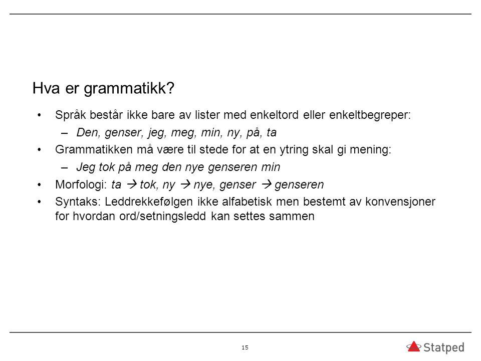 Hva er grammatikk Språk består ikke bare av lister med enkeltord eller enkeltbegreper: Den, genser, jeg, meg, min, ny, på, ta.