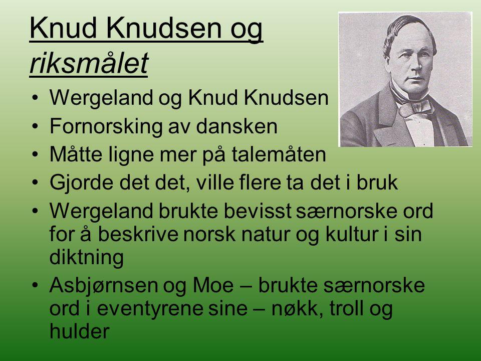 Knud Knudsen og riksmålet