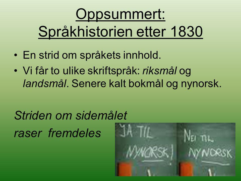 Oppsummert: Språkhistorien etter 1830
