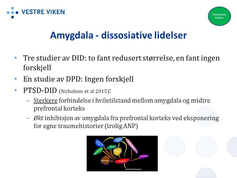 Amygdala - dissosiative lidelser