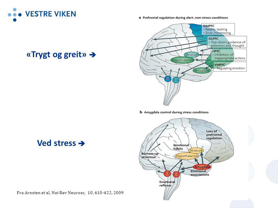 «Trygt og greit»  Ved stress 