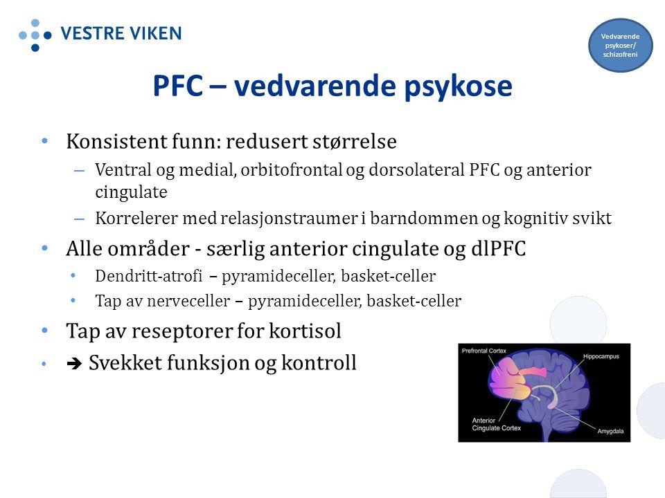 PFC – vedvarende psykose