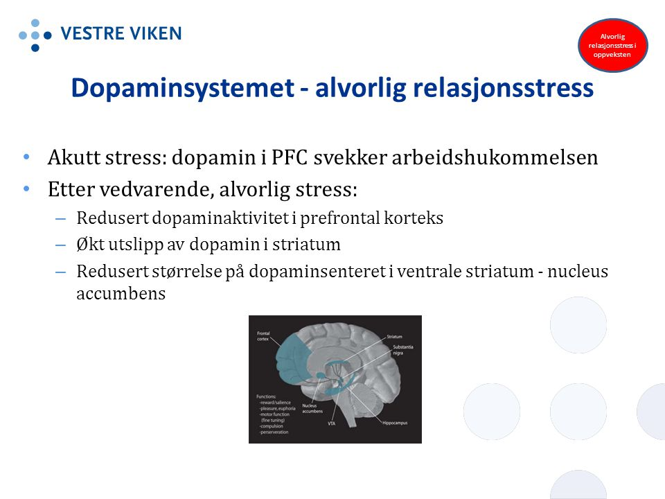 Dopaminsystemet - alvorlig relasjonsstress