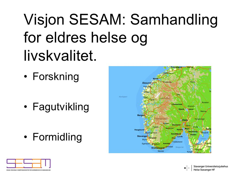 Visjon SESAM: Samhandling for eldres helse og livskvalitet.