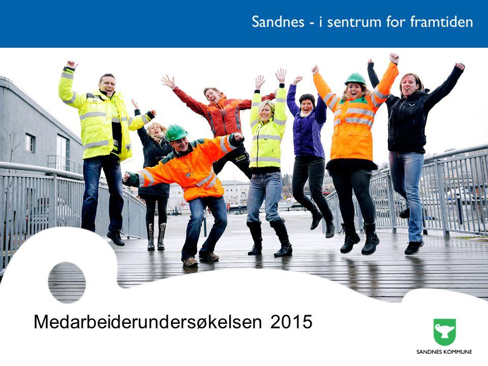 Medarbeiderundersøkelsen 2015