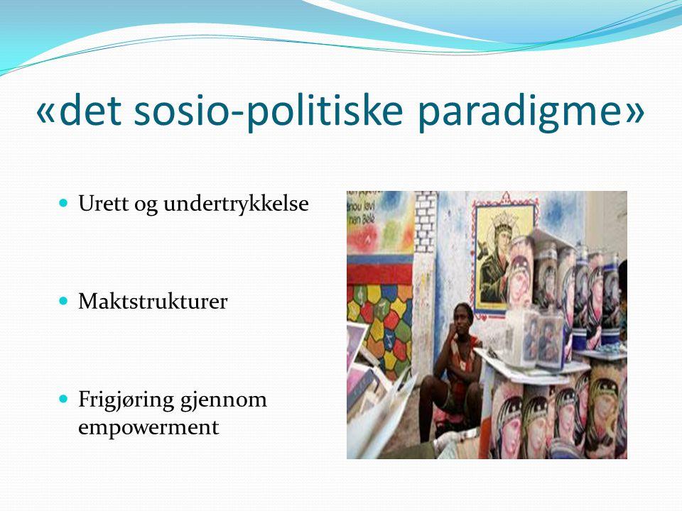 «det sosio-politiske paradigme»