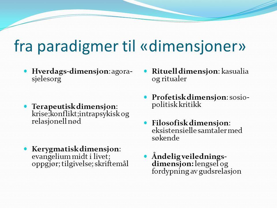 fra paradigmer til «dimensjoner»