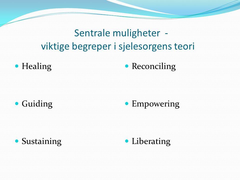 Sentrale muligheter - viktige begreper i sjelesorgens teori