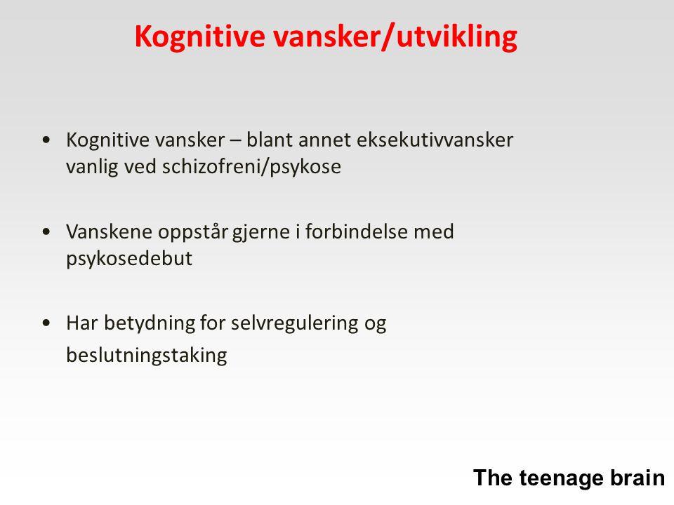 Kognitive vansker/utvikling