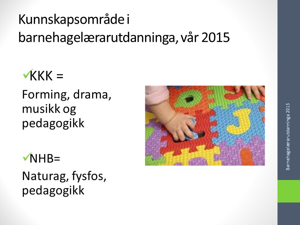 Kunnskapsområde i barnehagelærarutdanninga, vår 2015