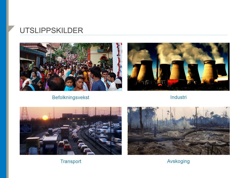 utslippskilder Befolkningsvekst Industri Transport Avskoging