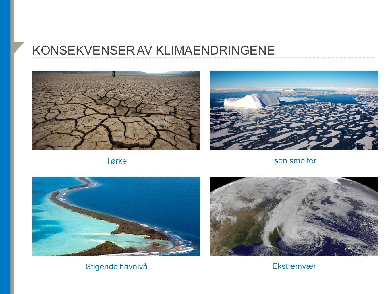 Konsekvenser av klimaendringene