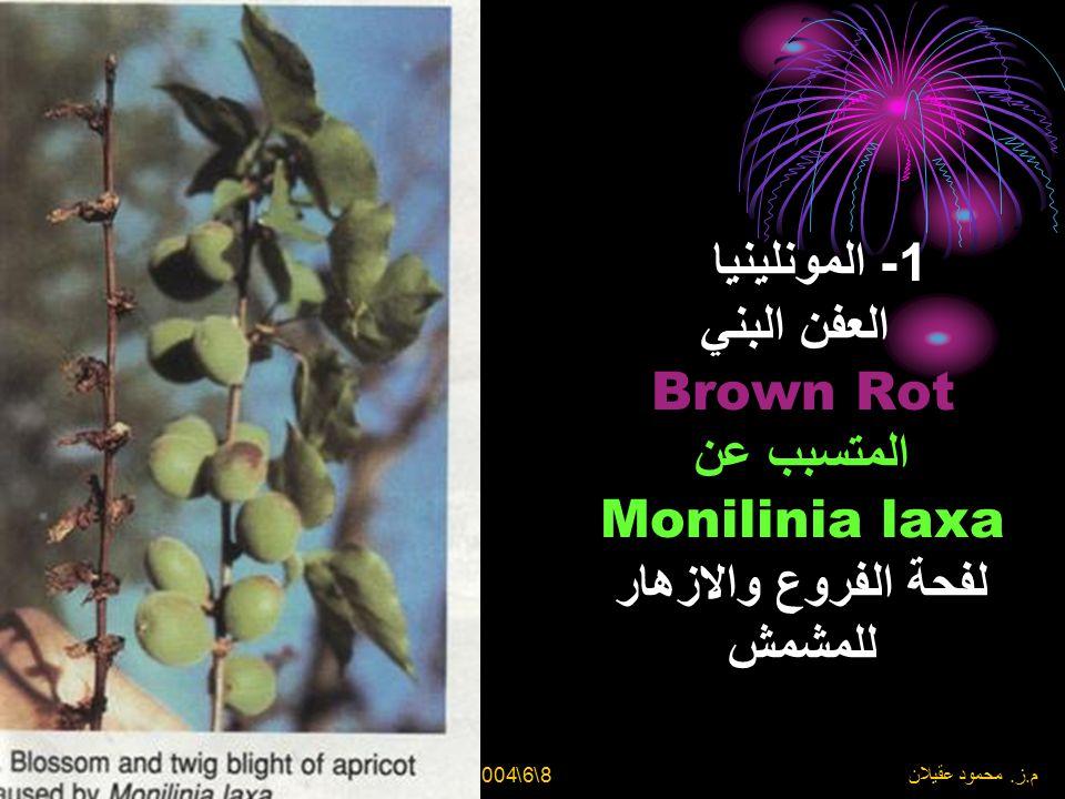 1- المونلينيا العفن البني Brown Rot المتسبب عن Monilinia laxa لفحة الفروع والازهار للمشمش