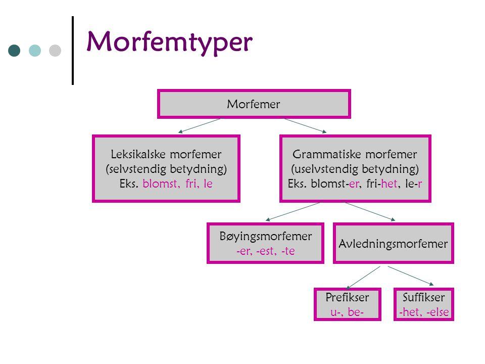 Morfemtyper Morfemer Leksikalske morfemer (selvstendig betydning)