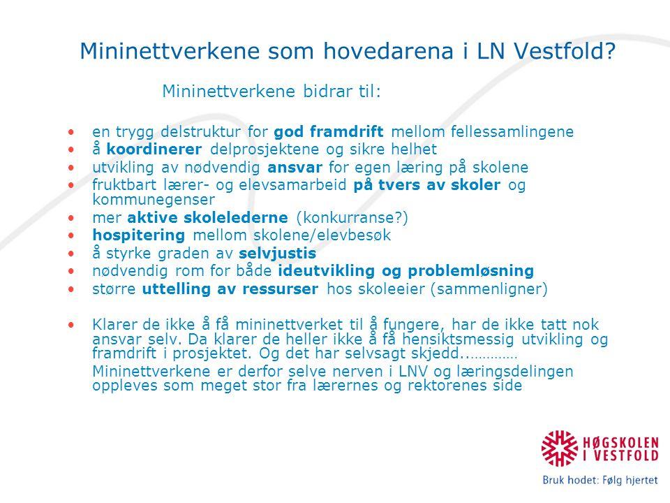 Mininettverkene som hovedarena i LN Vestfold