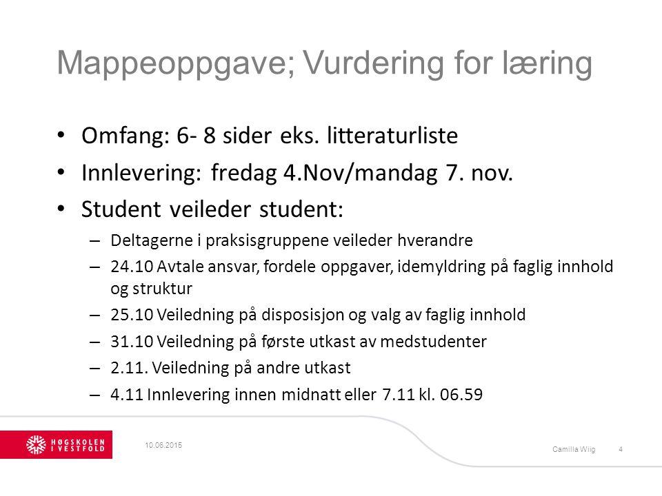 Mappeoppgave; Vurdering for læring