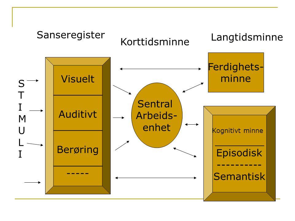 Sanseregister Langtidsminne Korttidsminne Ferdighets- minne Visuelt