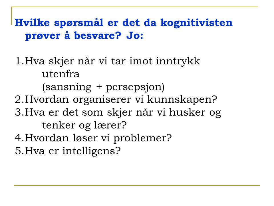 Hvilke spørsmål er det da kognitivisten prøver å besvare Jo: