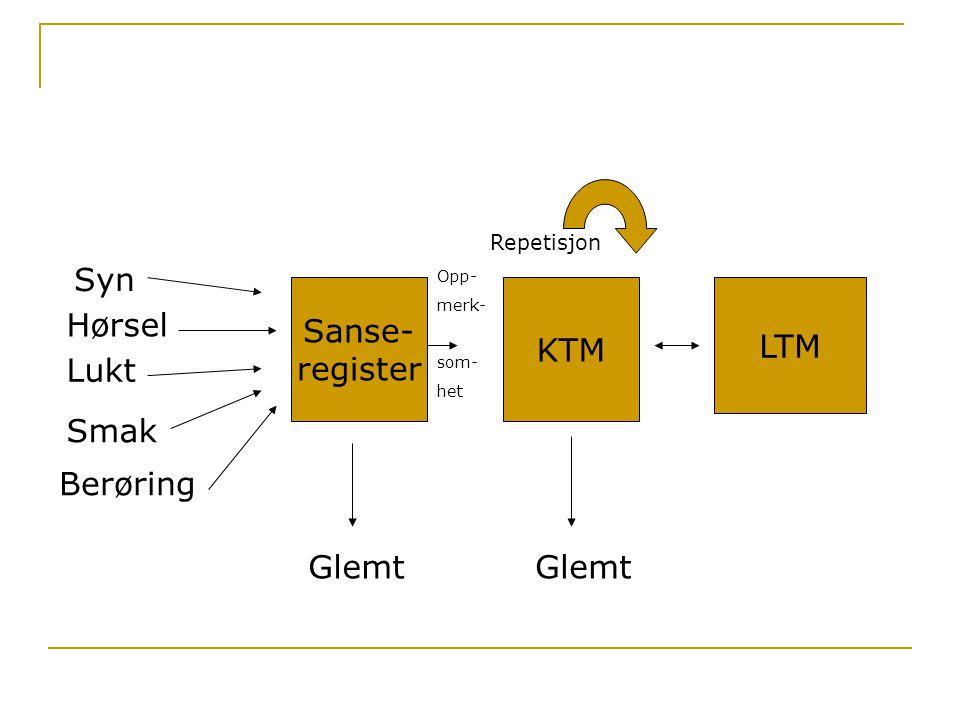 Syn Sanse- register KTM LTM Hørsel Lukt Smak Berøring Glemt Glemt