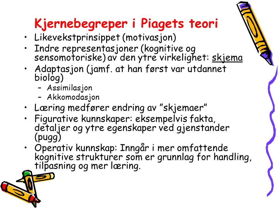 Kjernebegreper i Piagets teori