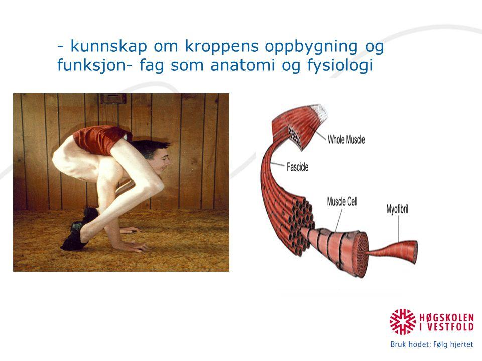 - kunnskap om kroppens oppbygning og funksjon- fag som anatomi og fysiologi