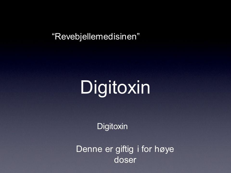 Digitoxin Revebjellemedisinen Denne er giftig i for høye doser