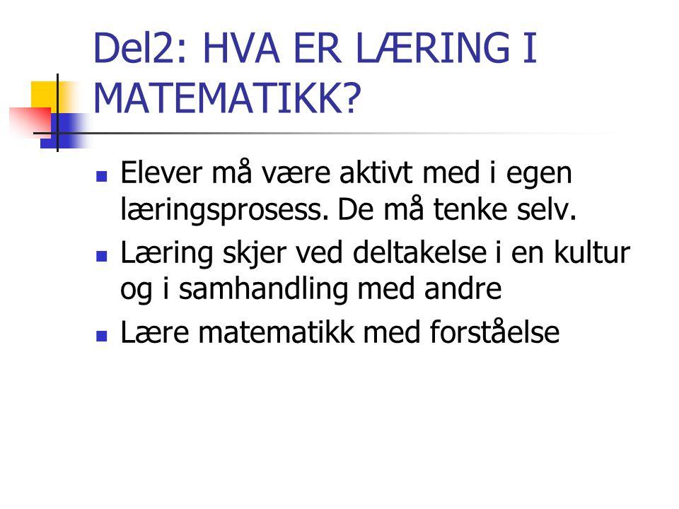 Del2: HVA ER LÆRING I MATEMATIKK