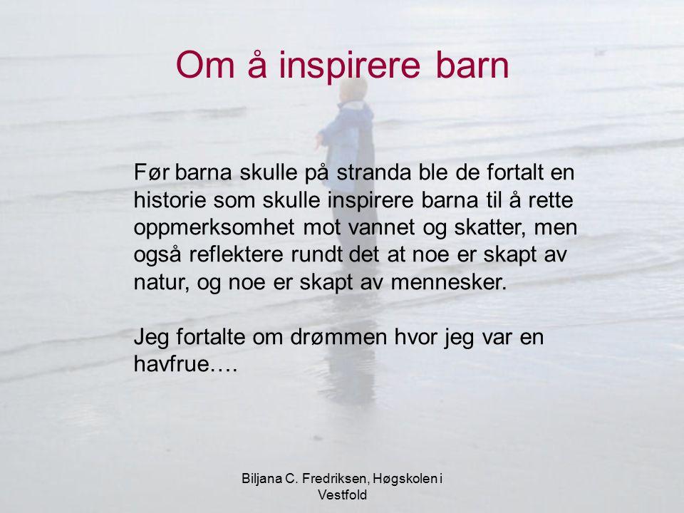 Biljana C. Fredriksen, Høgskolen i Vestfold
