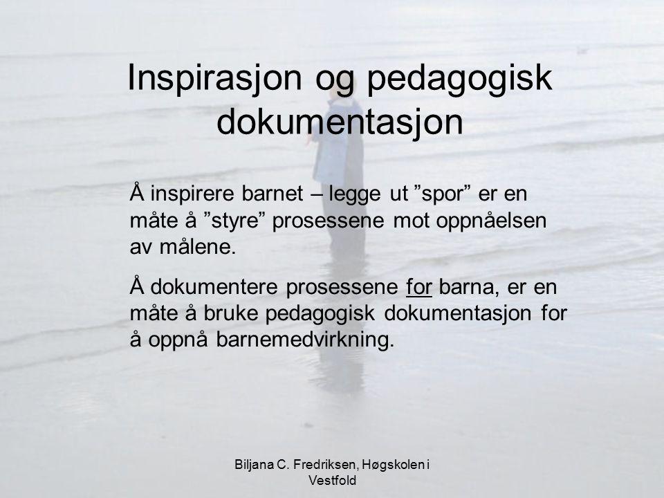 Inspirasjon og pedagogisk dokumentasjon