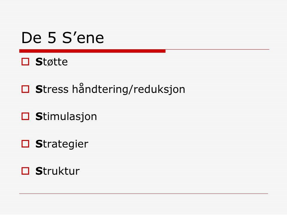 De 5 S'ene Støtte Stress håndtering/reduksjon Stimulasjon Strategier