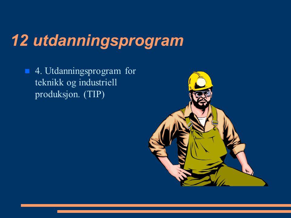12 utdanningsprogram 4. Utdanningsprogram for teknikk og industriell produksjon. (TIP)